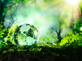 41378329 - crystal globe on moss in a forest  environment concept